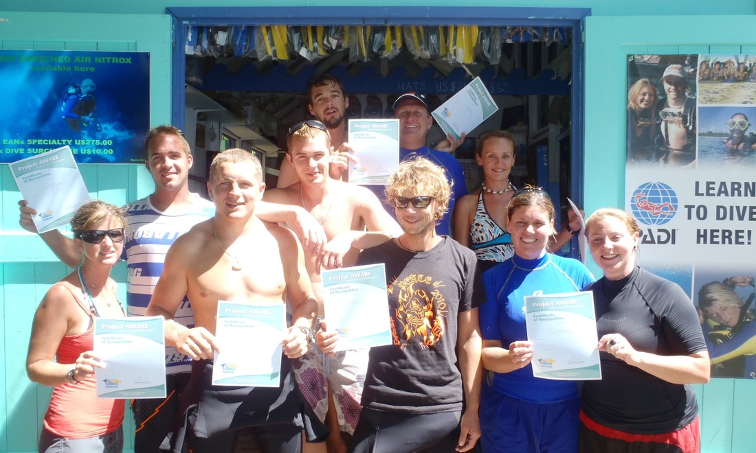 dive bequia clean up
